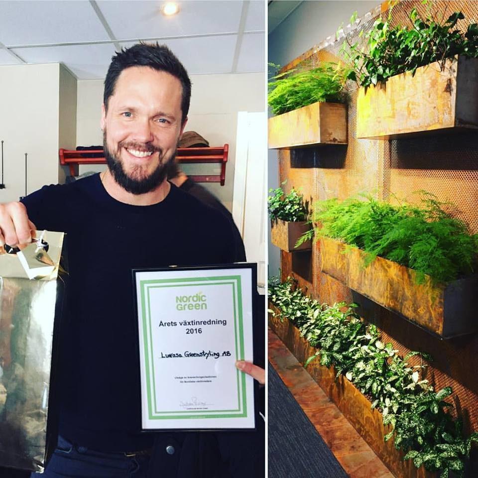 Årets växtinredning 2016