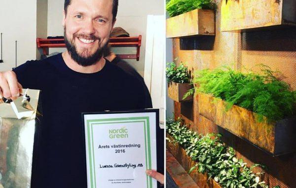 Årets växtinredning