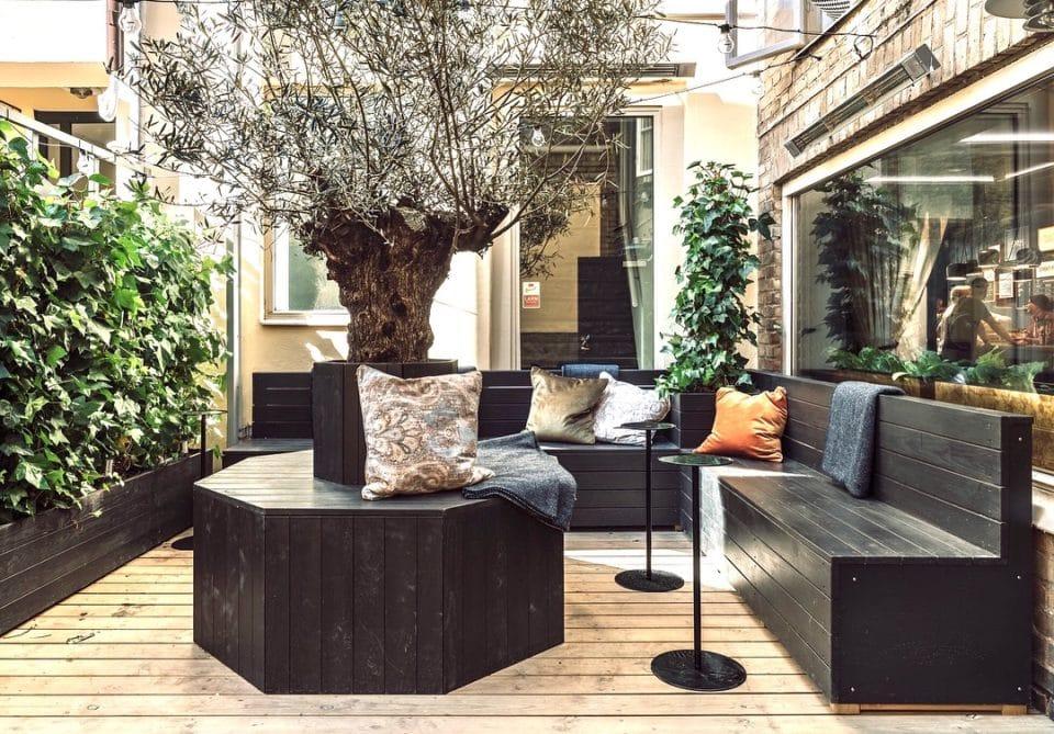 Uterum med olivträd och murgröna