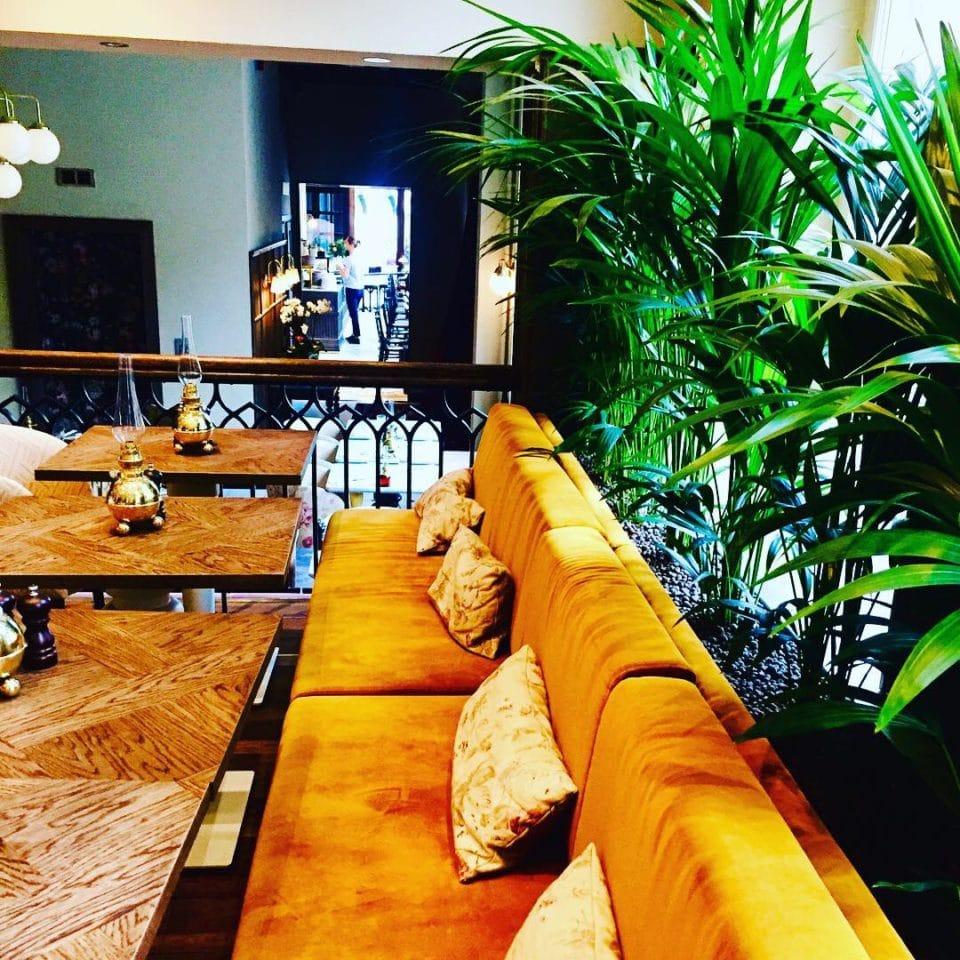 Restaurang och kentiapalmer