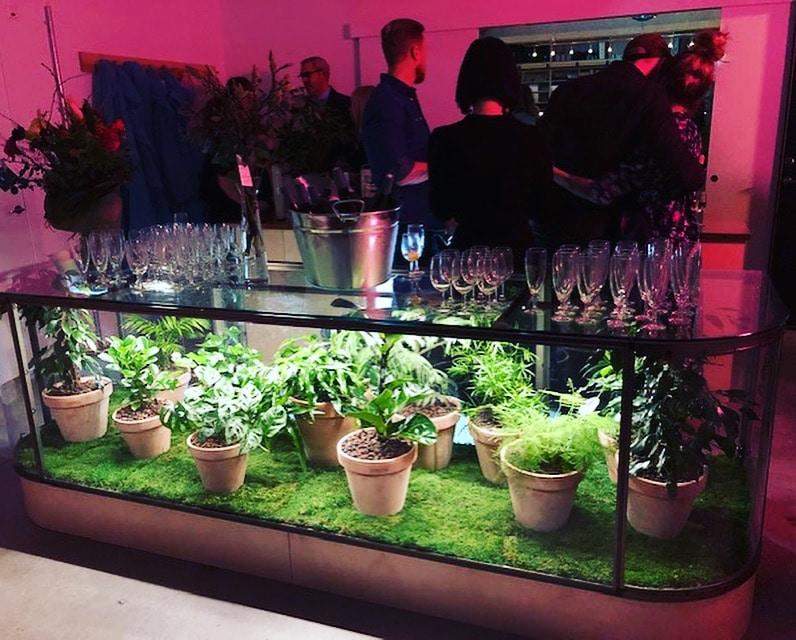Glasdisk med växter
